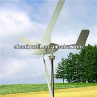 2013 new decorative wind turbine