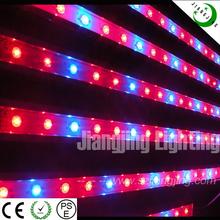 migliori prodotti 60w ip68 impermeabile dc12v 48 pollici led coltiva la luce importazione
