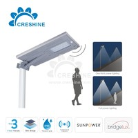 Smart Controller Solar Cell Garden Lamp