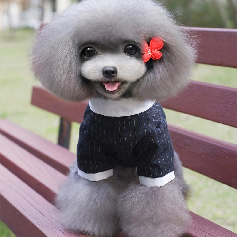 Wholesale Customize Pet Clothing Larger Dog Wedding Tuxedo Suit - Buy  Customize Pet Clothing,Dog Suit,Larger Dog Clothing Product on Alibaba.com