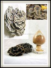 yunzhi mushroom,yunzhi mushroom extract
