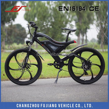 2015 Newdesigned e-bike, e-bike batter, e-bike torque sensor
