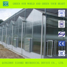 UV protection polycarbonate sheet Greenhouse for vegetable