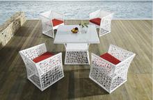 DS-(259) blanco rattan muebles de exterior juego de comedor / blanco mesa de comedor y silla