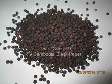 Cambodia Black Peper