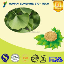 Factory 24%Total Ginkgo flavone glycosides 6%Total terpene lactones /Ginkgo Bioba Extract Powder