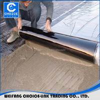 China flat roofing materials hdpe self-adhesive waterproof membrane