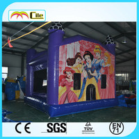 CILE Inflatable Princess Air Jumping Castle Toy for Sale