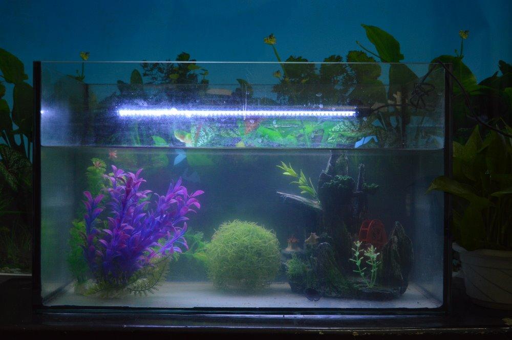 2017 nouveau populaire pas cher petit aquarium a 233 l 233 clairage r 233 servoirs de poissons