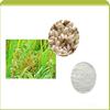 Factory supply Rice Bran Extract powder, 10% Ceramide