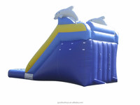 adult size inflatable water slide,water slides for adults,dolphin inflatable water slide