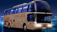 Dongfeng 4x2 12m New Style Bus/Bus Coach Accessories