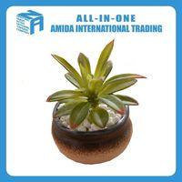irregular shape pottery flower pots