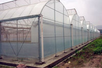 pe clear plastic film for greenhouse