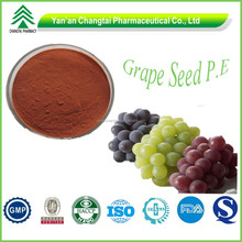 BV manufacturer supply competitive price top quality grape Seed extract