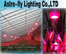 Export to Canada horticulture led 50w plant growing lamp ,50w led plant grow lamp ,led grow light 2015