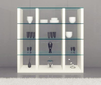 Glass Display Shoe Bathroom Kitchen Steel Cabinet Accessories