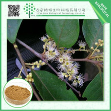 China factory supply low price Pygeum Extract Pygeum powder 20:1 pygeum bark extract