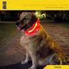 pet supply new item led flashing designer dog collar