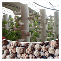 decorative hydrogel beads soil for home hydroponic systems