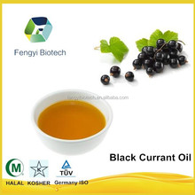 china supplier wholesale high quality factory price cosmetic grade black currant seed oil in bulk