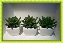 artificial plant in small pot