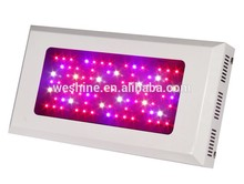 high standard panel led grow light 504w best price led grow lamp panel with patent innovation design