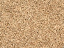 INDIAN WHITE HULLED AUTODRY SORTEXTED SESAME SEEDS
