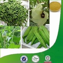 Factory supply Natural & Pure competitive-price Abelmoschus esculentus L.Moench, sexual wellness Okra Extract, Polysaccharide