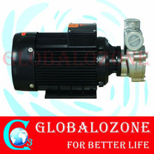 Dissolve water and Ozone Mixing Pump& Mixing Tank