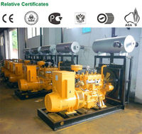 Bottom price promotional wood chips biogas power generator
