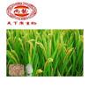 Organic Rice Bran Powder Ferulic Acid 98% / Natural Ferulic Acid Powder / Ferulic Acid Powder 98% Synthetic