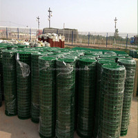 High quality Heavy gauge pvc coated welded wire mesh ( factory , ISO 9001 certificate )