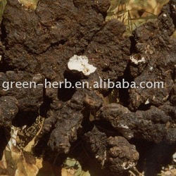 Chuling(Plant Extract) powder