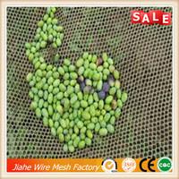 olive harvest machine/olive harvest net/collecting olive net
