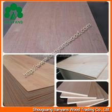 Ash/oak/sapele natural wood veneered standard sizes commercial plywoods