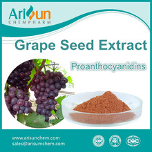 Factory Supply High Quality Powder Grape Seed Extract 95%