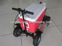 Cheap 50CC 4 Stroke Gas Powered Cooler Scooter SX-G110