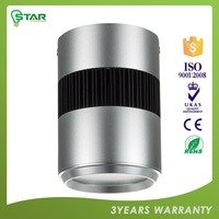 Highest Quality Custom Made 3-Year Warranty Ce ,Rohs Certified Dob Led Down Light