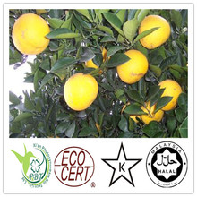 100% natural grapefruit seed extract