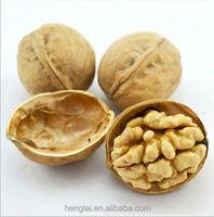 chinese walnuts,walnut meat, walnuts kernel