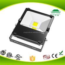 CE RoHS SAA IP65 Bridgelux 6000k 100-270V 12V 24V 50w led stage flood light