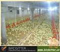 Equipos para alimentación de las aves de corral
