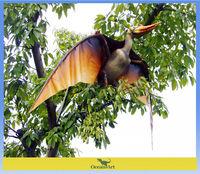 China pterosaur fly dragon