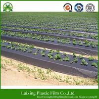 Agricultural Black Mulching Film