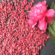 british red kidney beans kidney price