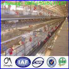 Good quality CA supply 4 tiers small chicken coop design for laying hens