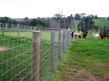 China kangze mesh fence used in cattle, goat, deer, and pig