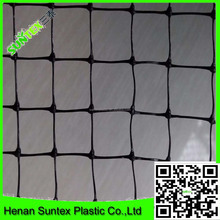poultry barricade protection net/new hdpe bird trapping net/cheap plastic bop bird guard netting