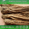 Plant Extract Ligustilide Chinese angelica Extract 1% (4:1-20:1)